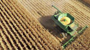 Brazil phát triển nguồn nông sản ra thị trường thế giới