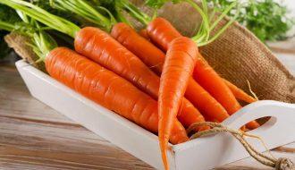 Các loại sâu bệnh gây hại trên cà rốt? Sử dụng biện pháp phòng trừ nào?