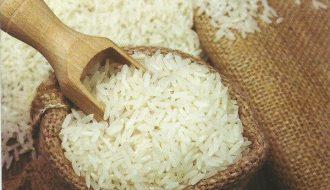 Dự kiến về giá cả và tình hình về thị trường gạo trên thế giới