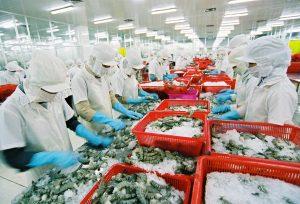 EU-Thị trường tiêu thụ thủy hải sản lớn trên thế giới