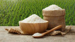 Hiệp định Thương mại giúp việc xuất khẩu nông sản Việt trở nên dễ dàng hơn