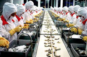 Nhiều mặt hàng khác cũng được xuất khẩu qua Nhật Bản