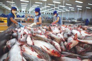 Đánh giá của Bộ Nông nghiệp Việt Nam
