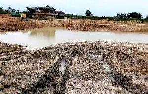 Sự cần thiết của việc cải tạo ao sau mỗi vụ nuôi trồng thủy sản