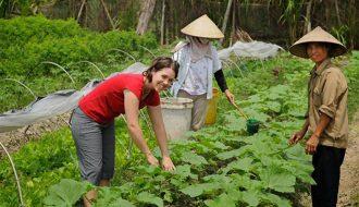 Trung Quốc có xu hướng chuyển sang sản xuất nông nghiệp hữu cơ