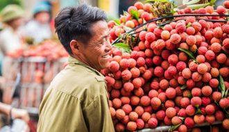 Trung Quốc không còn là thị trường chính trong xuất khẩu nông sản Việt