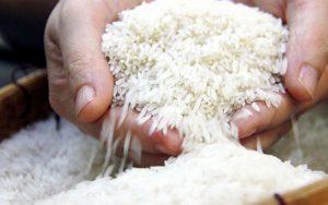 Việt Nam xuất khẩu lô gạo thơm đầu tiên 1.600 tấn mở màn năm 2021
